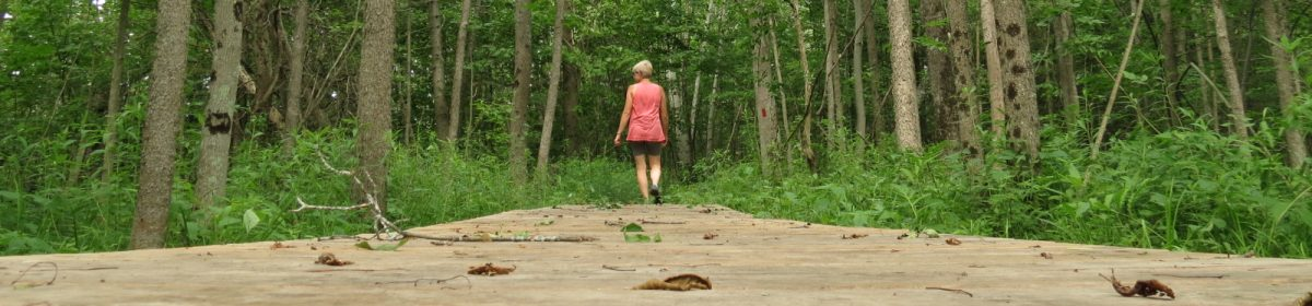 Friends of Hibou Conservation Area – Ontario, Canada
